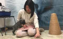 Jackson fosters furry friends: does good in an adorable way