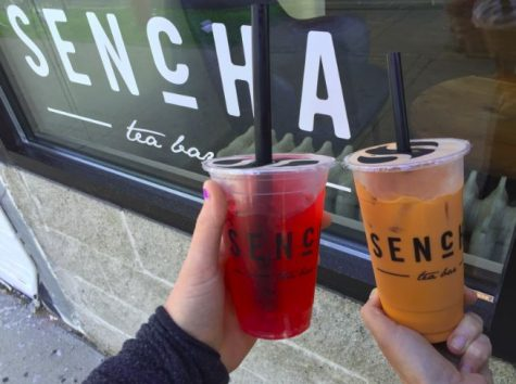 REVIEW: Sencha provides laid back atmosphere that attracts students