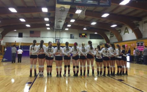 Volleyball raises money for fight against breast cancer during Dig Pink event