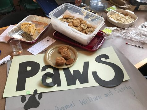 PAWS hosts bake sale in honor of national hug a bear day