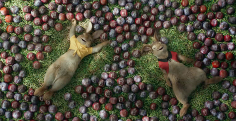 [MOVIE REVIEW] What would spring be without Peter Rabbit?