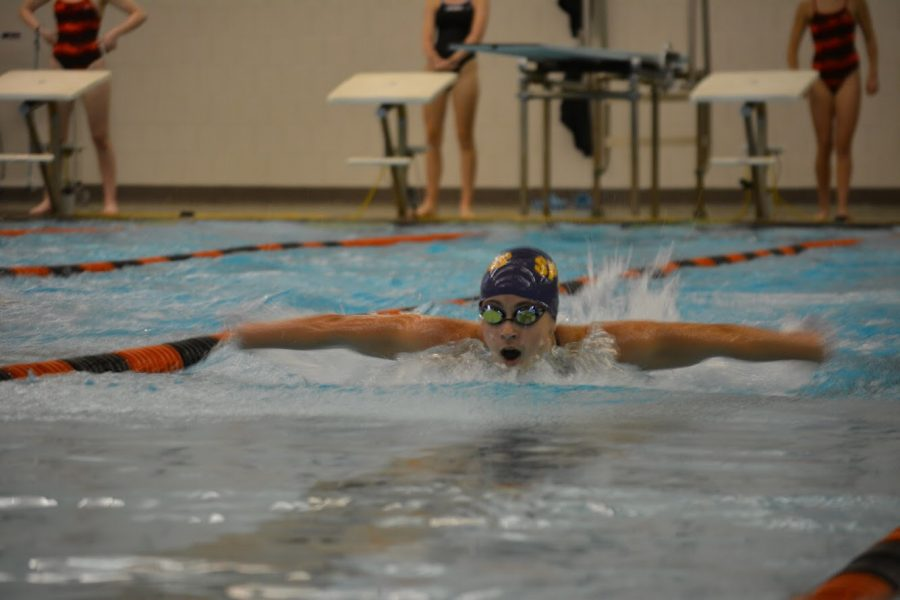 Sophomore+Mina+Mandic+swimming+the+100+butterfly.+