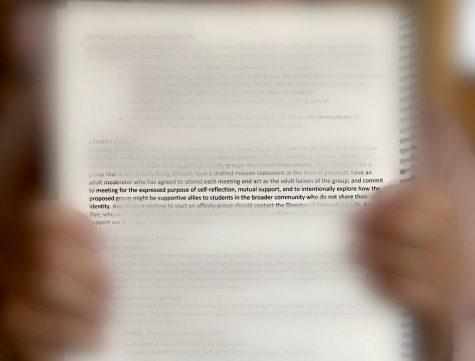 Affinity group language in handbook needs revisting