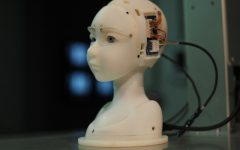 Making the Emotional Robot: the future of Artificial Intelligence