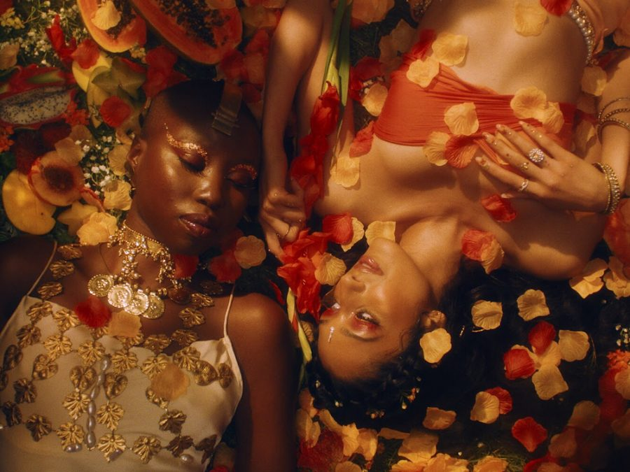In+Raveena+Aurora%27s+%22Temptation%22+music+video%2C+Aurora+and+Giannina+Oteto+lie+on+flower+petals+in+a+stunning+visual+metaphor+for+their+love.