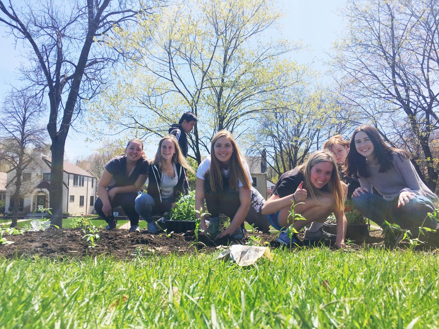 Juniors+Celeste+Parke-Reimer%2C+Sonja+Henze%2C+Sydney+Therien%2C+Abby+Hedberg%2C+and+Amelia+Batson+have+worked+for+the+last+year+in+PEP+to+plan+for+the+pollinator+garden.