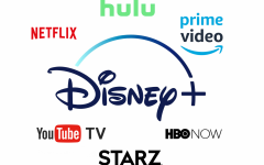 Disney+ contributes to streaming service problem