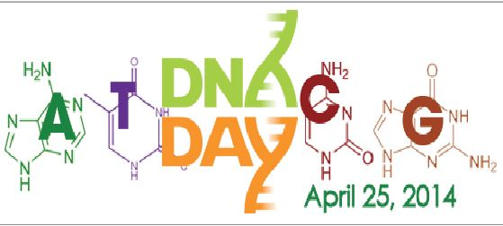 """The DNA day competition allows students to be rewarded for superior knowledge of genetics. """"I would definitely recommend students to enter the competition if they're interested in the DNA,"""" junior Afsar Sandozi said."""