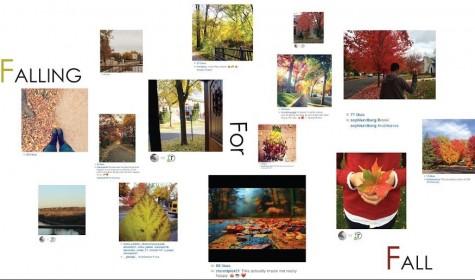 Fall brings beautiful colors
