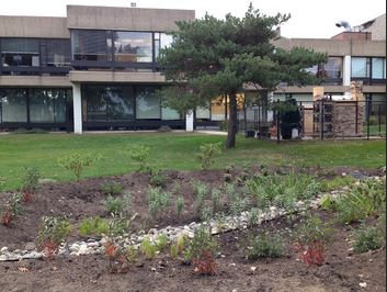 "After months of planning, the rain garden is finally in place, ready to fight pollution. ""That hole usually gets a lot of gross, muddy water after it rains or if snow is melting. So it will be good there, because it will get the excess water,"