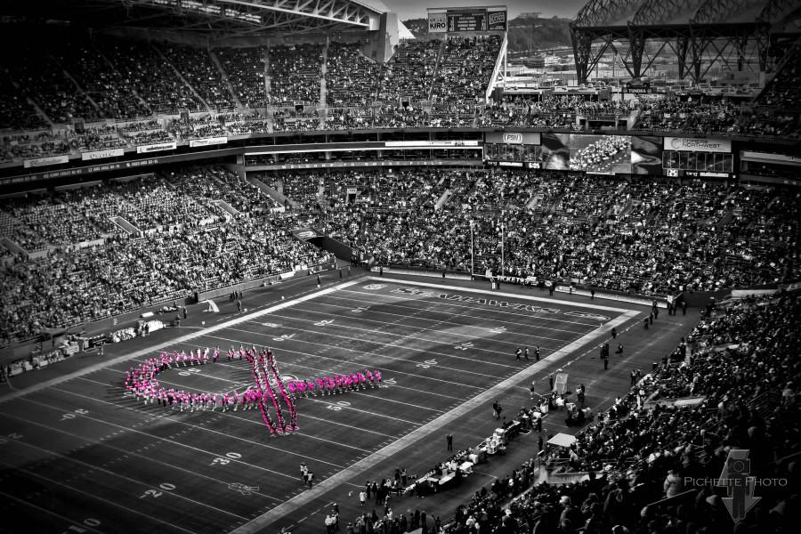 THE NFL spends million of dollars to advertise breast cancer awareness, rather than spending the money to find a solution.