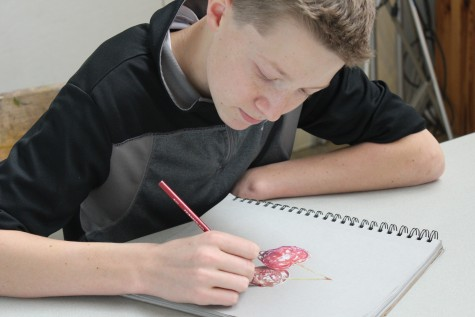 """SOPHOMORE WEB LEHMANN adds the finishing touches to Cherries. """"In our current society people are so insistent on instant gratification, but art is about accepting failure,"""" he said."""