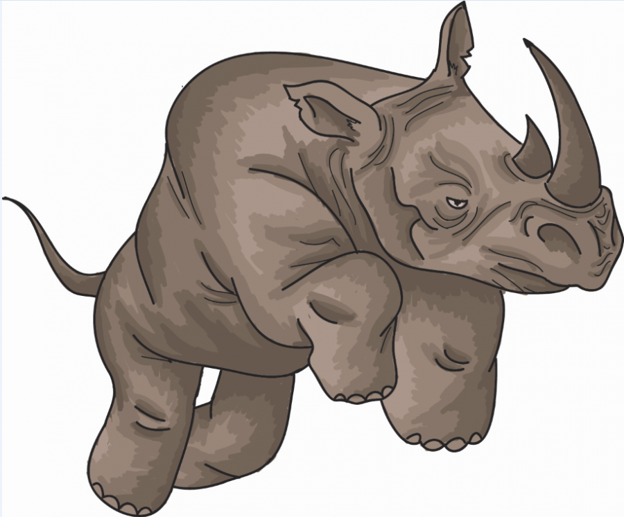 RHINOS are known for their dominative and assertive qualities, although one does not have to posses these traits to be a good leader.
