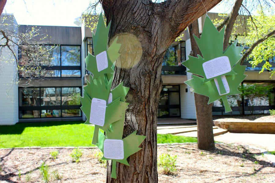 Junior+Moira+McCarthy%27s+project+on+poet+Wendell+Berry+drifts+in+the+wind+as+the+leaves+of+analysis%2C+poetry%2C+and+biography+hang+on+a+tree+in+the+Lilly+Courtyard.+