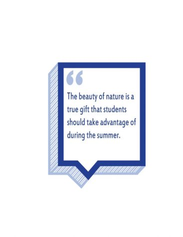 Summer camps allow students to retreat into nature and build new friendships