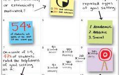 Goals: Their motivations, development and acheivement