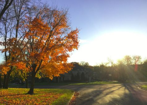 Minnesotans are fortunate to have these seasonal bursts of color, but it seems that many people, especially teenagers, take this for granted and fail to stop for even a minute to admire the natural beauty of autumn. Taking a short break from the stress of schoolwork to go outside for a fall stroll around the neighborhood has many benefits.