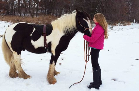Sophomore Isabel Dieperink combines her love of horses while volunteering at Lakeview Farm to teach children with anxiety or with an intellectual disability the joy of riding horses.