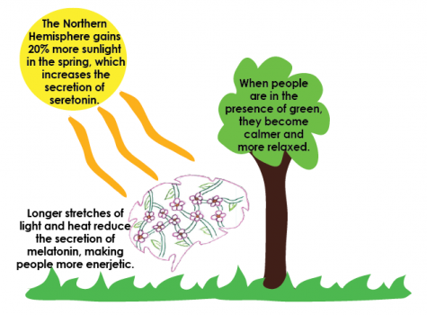 CHEMISTRY. When spring arrives, the warmth of the sun decreases melatonin making people more active, and the presence of green makes people feel relaxed.