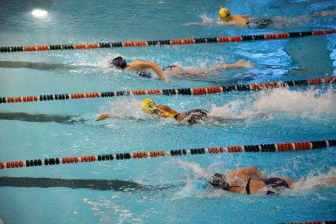 SPARKS Swim and Dive plunges into competition season