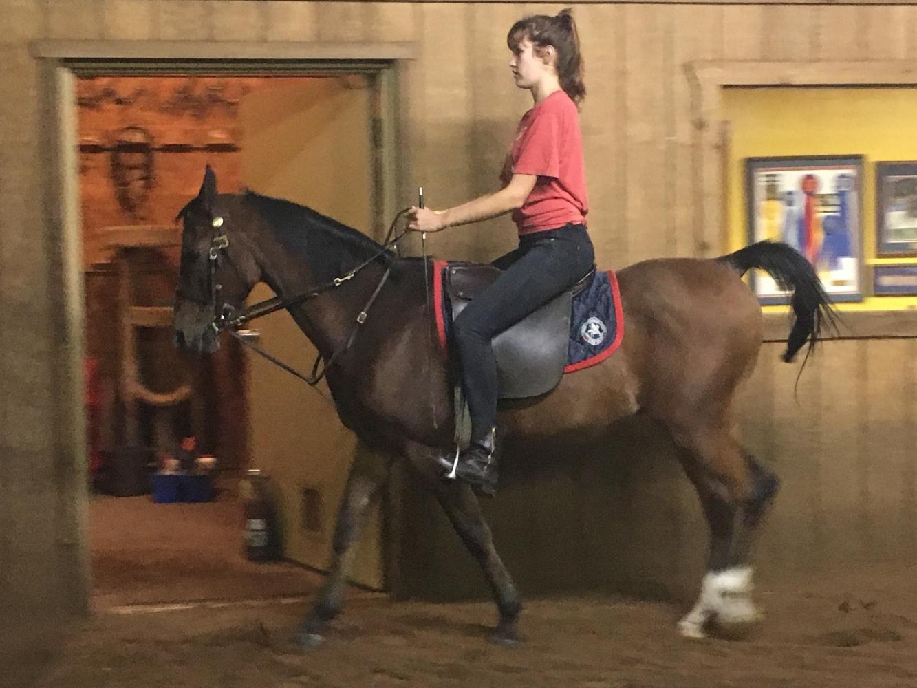 SADDLED UP. Soph,ore horse racer Alessandra Costalonga rides around on her horse.
