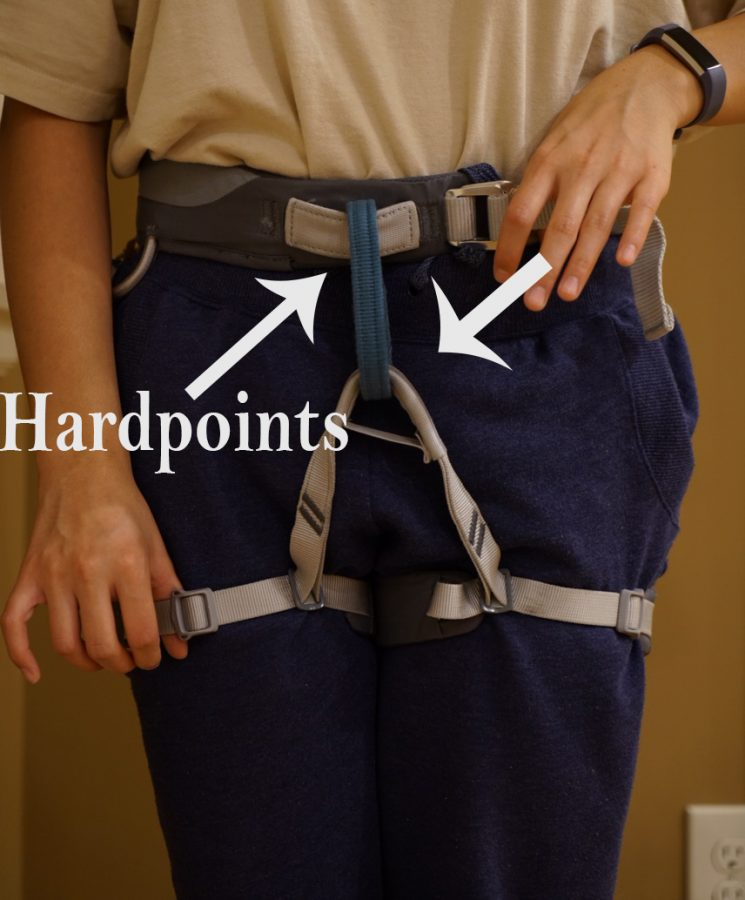 Thread the rope through the hard points of the harness.