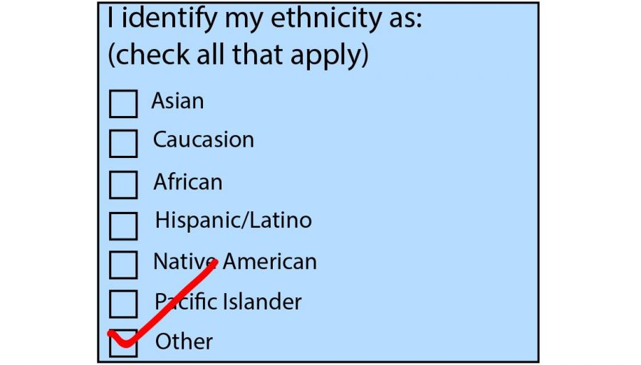 Non-inclusive race options such as these on standardized tests provoke frustration for many multiracial students.