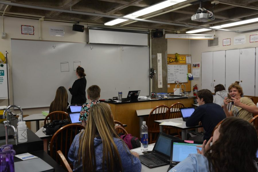 US Chemistry teaccher Mallory Schmidt draws and identifies parts of a Galvanic Cell for the students.