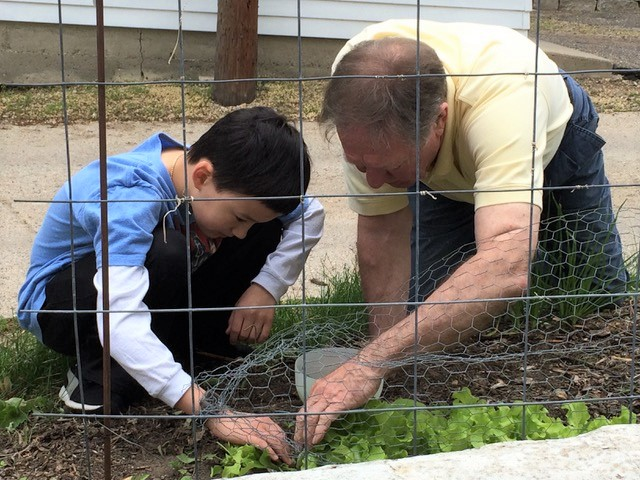 From 2015: Nikolas Liepins plants vegetables in a garden with his grandfather.