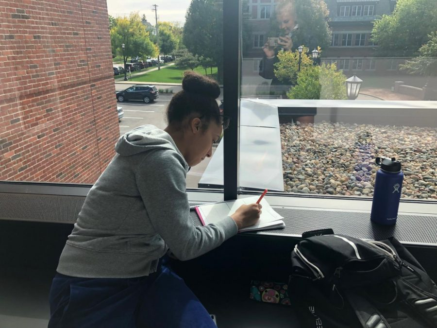 I like working on the second floor of Schilling by the windows, junior Arie Walker said. It is really nice to be surrounded by so much light and warmth from the outdoors.