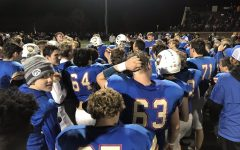 SMB Wolfpack wins section finals, advances to state