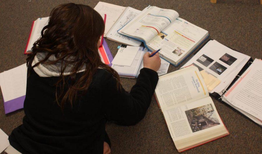 Anna Gaudio studying for exams.  Photo Credits: Kendra Christ