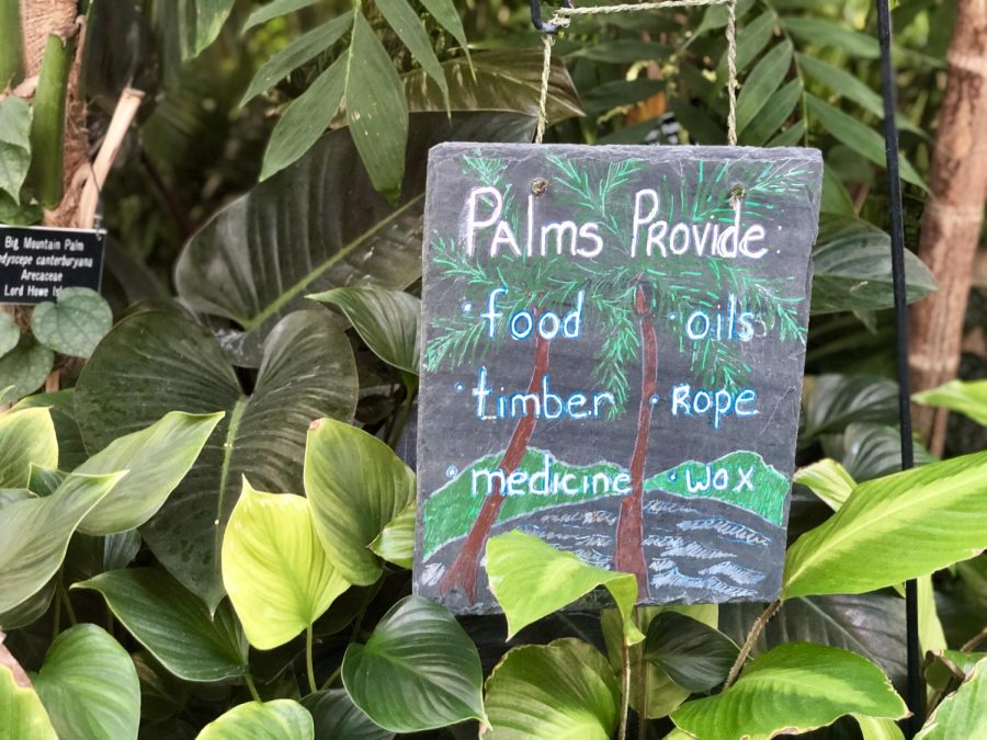Some little known scientific facts on display in the Como Park Conservatory.