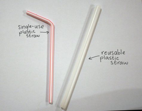 Often times, the straws given out at resturants and that can be mass-bought at grocery stores, degrade easily. A reusable plastic straw, which is thicker and about the same size, can last a lot longer than the cheap and flimsy straws.