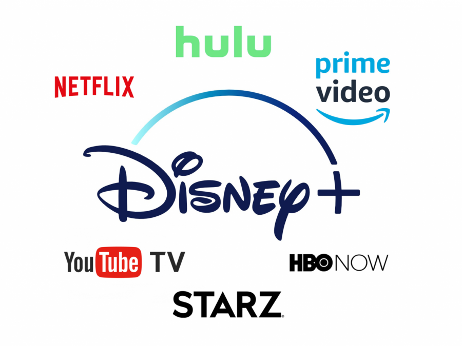 Disney+ is simply another option in a rapidly-expanding pool of streaming services. Image from