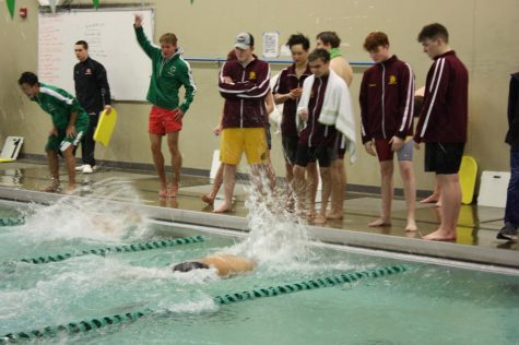 Boys Swim & Dive competes at section prelims