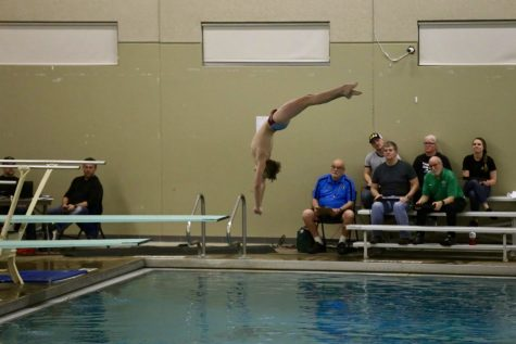 Tanner Zeise in a graceful dive: he moves on to the state meet in only his second year on the team.