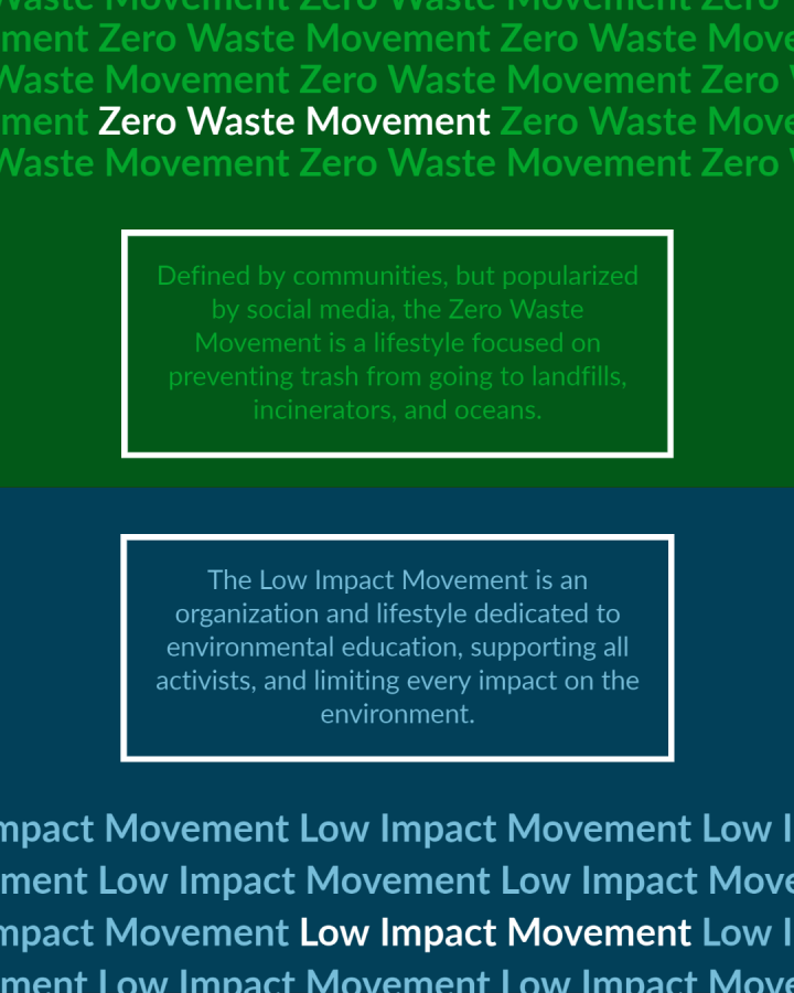 What is the Zero Waste Movement? What is the Low Impact Movement?
