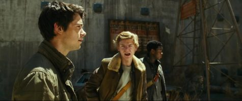 Thomas and Newt planning what to do next .