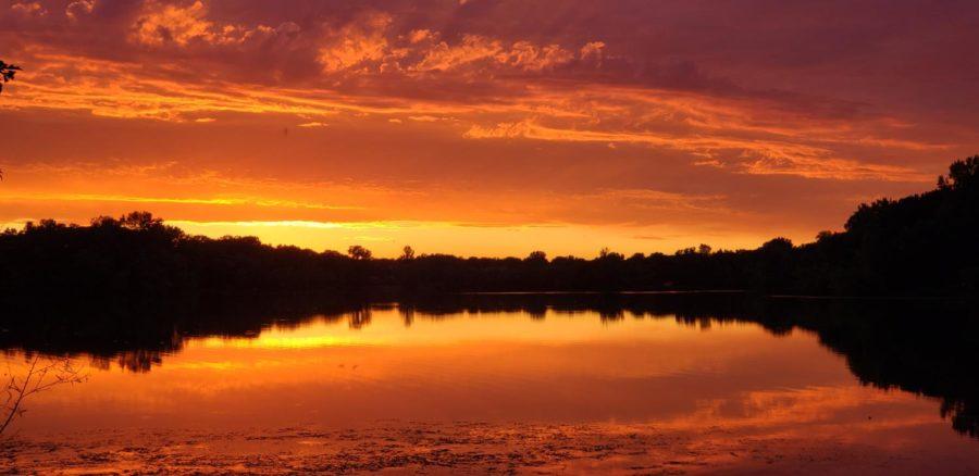 The sun turns the sky a fiery orange red just like a desert savannah.