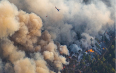 Over a dozen homes were lost, and officials closed the wilderness. The Greenwood Fires in the Boundary Waters was a constant item of stress through the summer for many. Houses and other buildings were lost, the environment suffered, and the air quality curtailed for hundreds of miles.