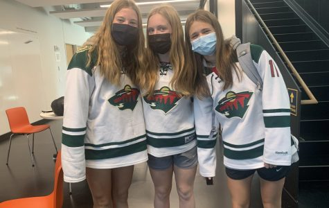 Fan day brings out Homecoming dress-up spirit in students