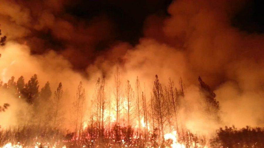 Locally in Minnesota, which had record-breaking droughts this summer, there have also been many large-scale wildfires around and in the Boundary Waters Canoe Area Wilderness (BWCA) that left the area closed for the first time in 45 years.